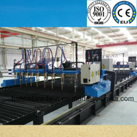 Multi Head Strip CNC Cutting Machine
